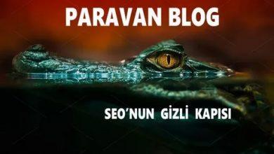 Photo of Paravan Blog Nedir? Ücretsiz Paravan Blog Listesi